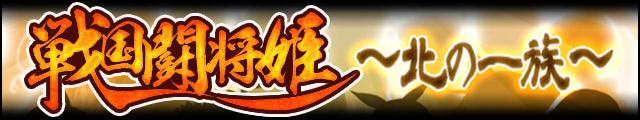 戦国闘将姫~北の一族~バナー.jpg
