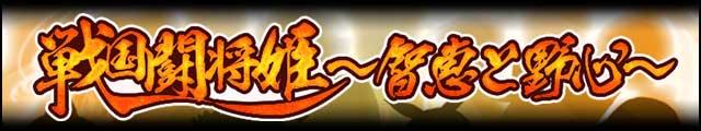 戦国闘将姫~智恵と野心~バナー.jpg